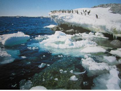 남극05.jpg